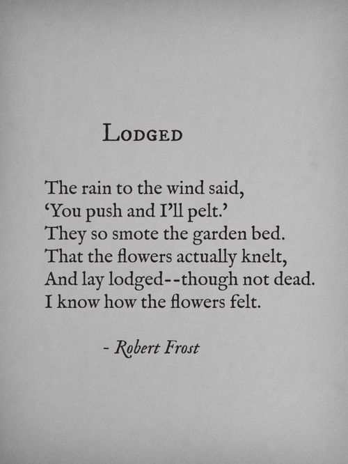 Robert Frost: Lodged