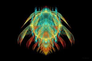 fractal insect